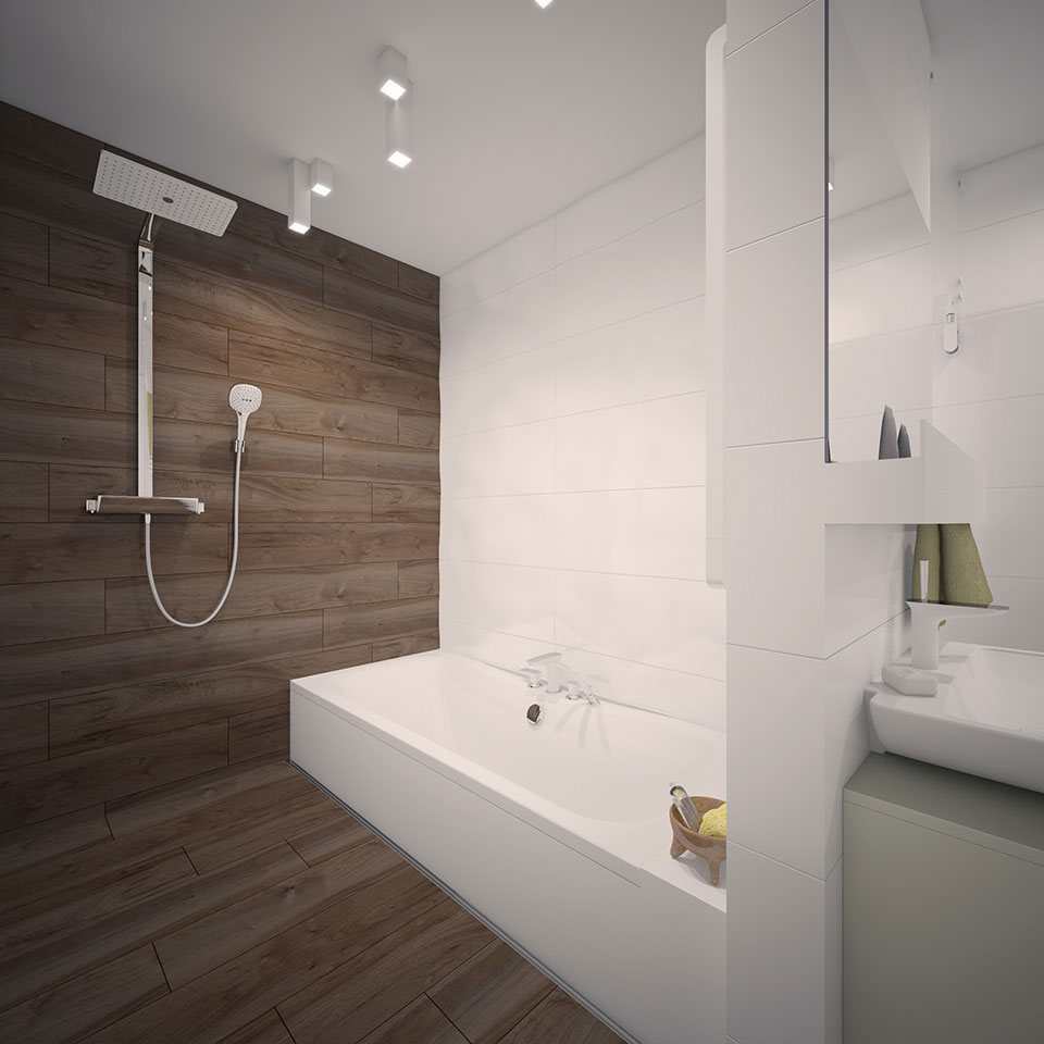 bathroom design - kyiv apartment
