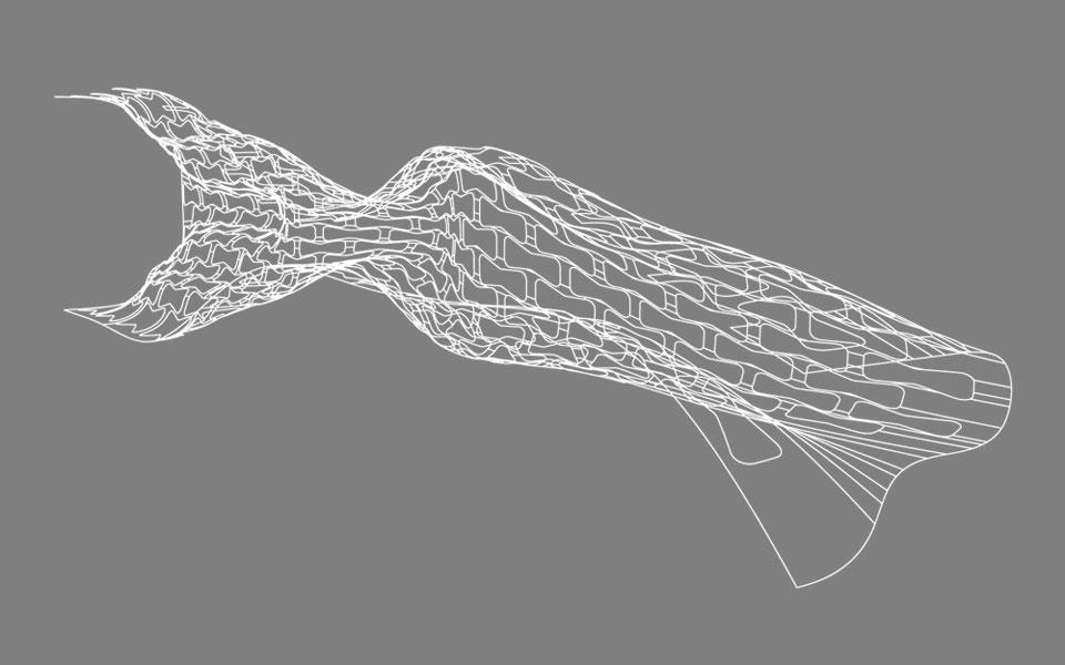 параметрическая архитектура. разрез оболочки музея