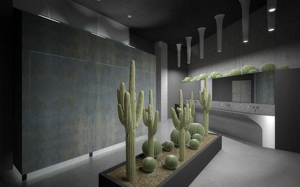 офіс компанії - туалети з кактусами