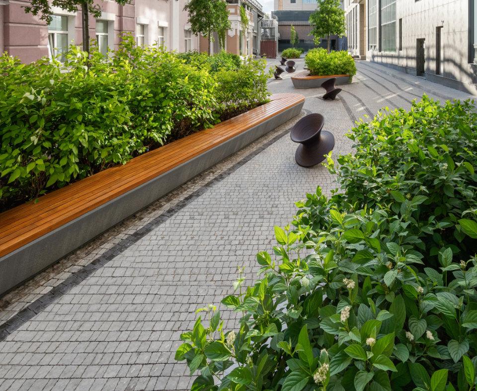 озеленення внутрішнього двору
